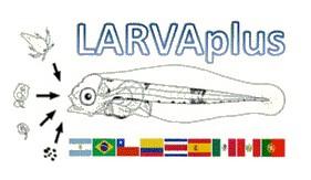 Estrategias de desarrollo y mejora de la producción de larvas de peces en Iberoamérica, CYTED 117RT0521